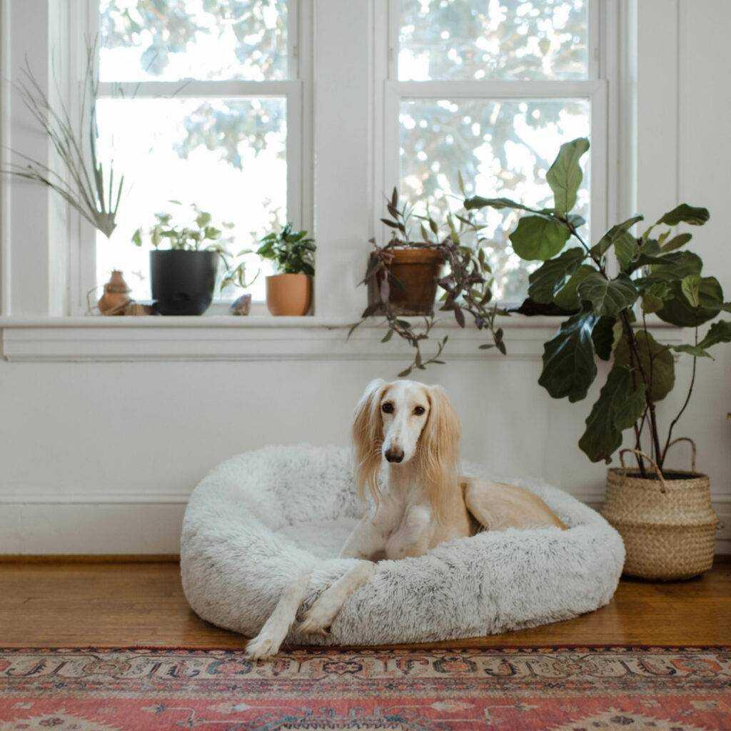 Skap god romfølelse med nette møbler, speil og luftige tekstiler.